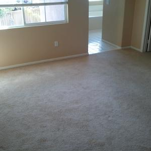Remove carpet and install wood flooring. licensed san diego contractor